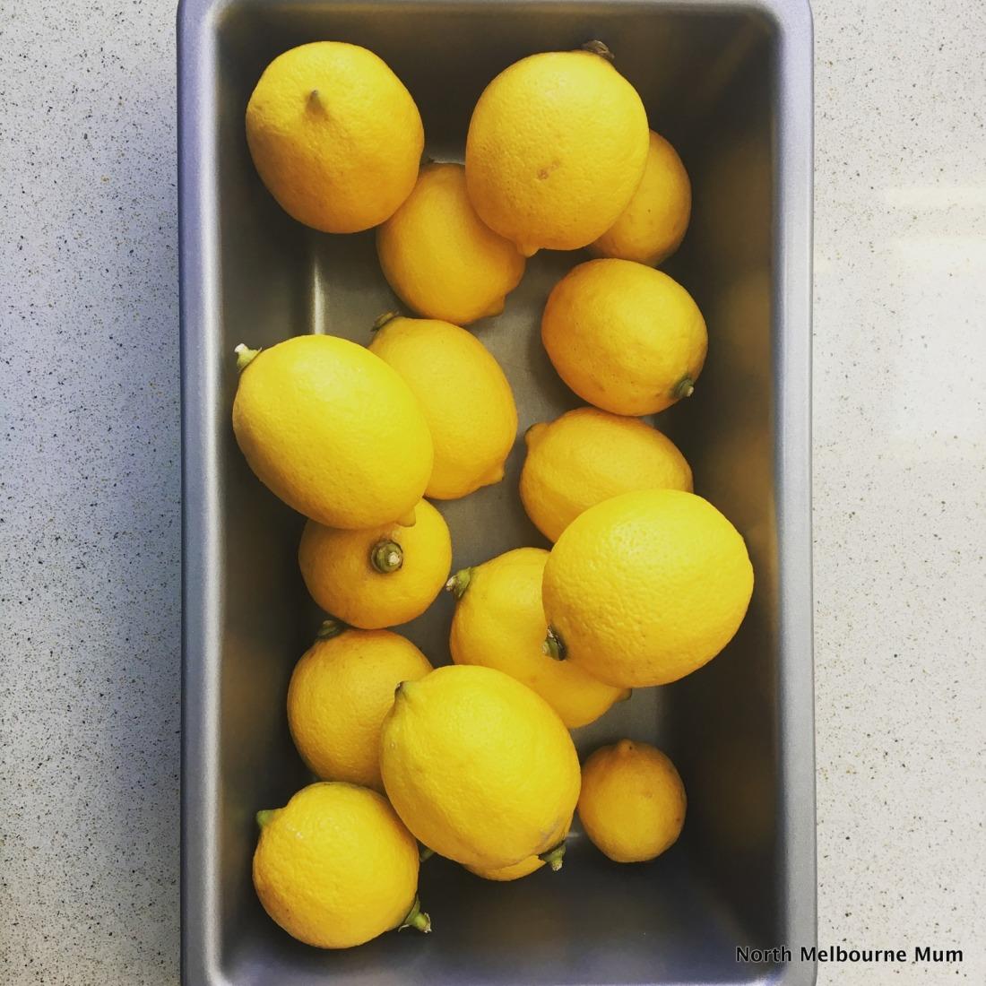 Lemons north melbourne